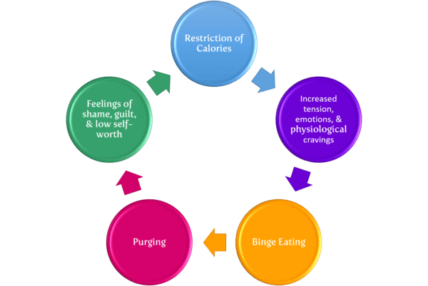 bulimia cycle of restriction and purging