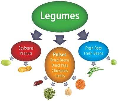 difference between pulses