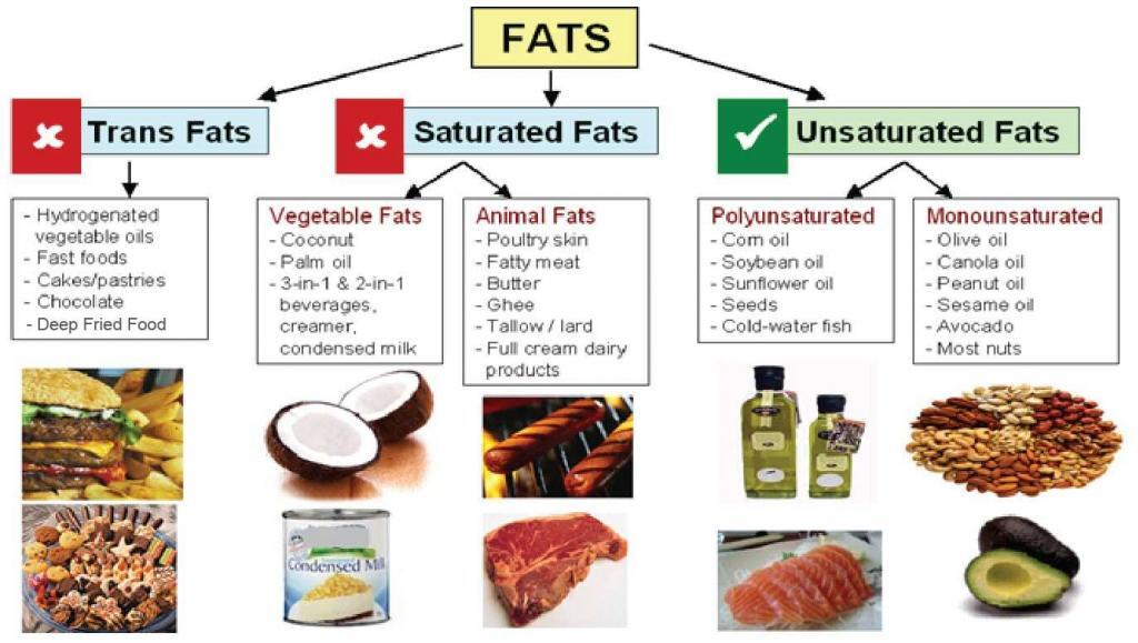 different types of fats, saturated, unsaturated and trans